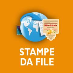 Invia il tuo file